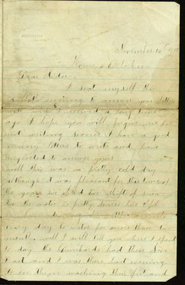 Letter from Elizabeth Statler to her sister in Hudson, McLean County, Illinois, on November 14, 1880