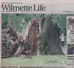 Hearings before the Wilmette Zoning Board of Appeals will be held August 3, 2011.
