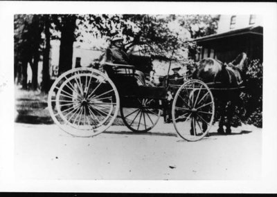 Mrs. Fred H. Witt riding in a horse-drawn buggy