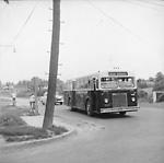 NEWMARKET COACH LINES, bus #29