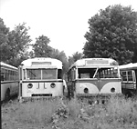GRAY COACH LINES, bus #649 (on left) & Danforth Bus Lines #27 (on right)             at Elliott Auto Parts, Newtonville, Ont.