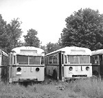 GRAY COACH LINES, bus #650 (on left) & #649 (on right) at Elliott Auto             Parts, Newtonville, Ont.