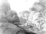 Rapid of La Dalle, French River, Ontario