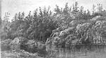 Gull Lake, Gravenhurst, Muskoka (Ontario)