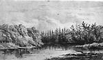 The Severn River (Gravenhurst, Ontario) (?)