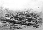 A Log Pile, Oro (Ontario)