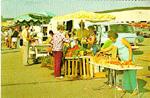 Postcards -- Burlington Summer Market