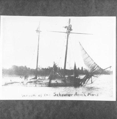 ANN MARIA (1864)