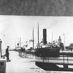 NEWONA (1909)