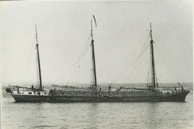 GRADY, WILLIAM (1867, Brigantine)
