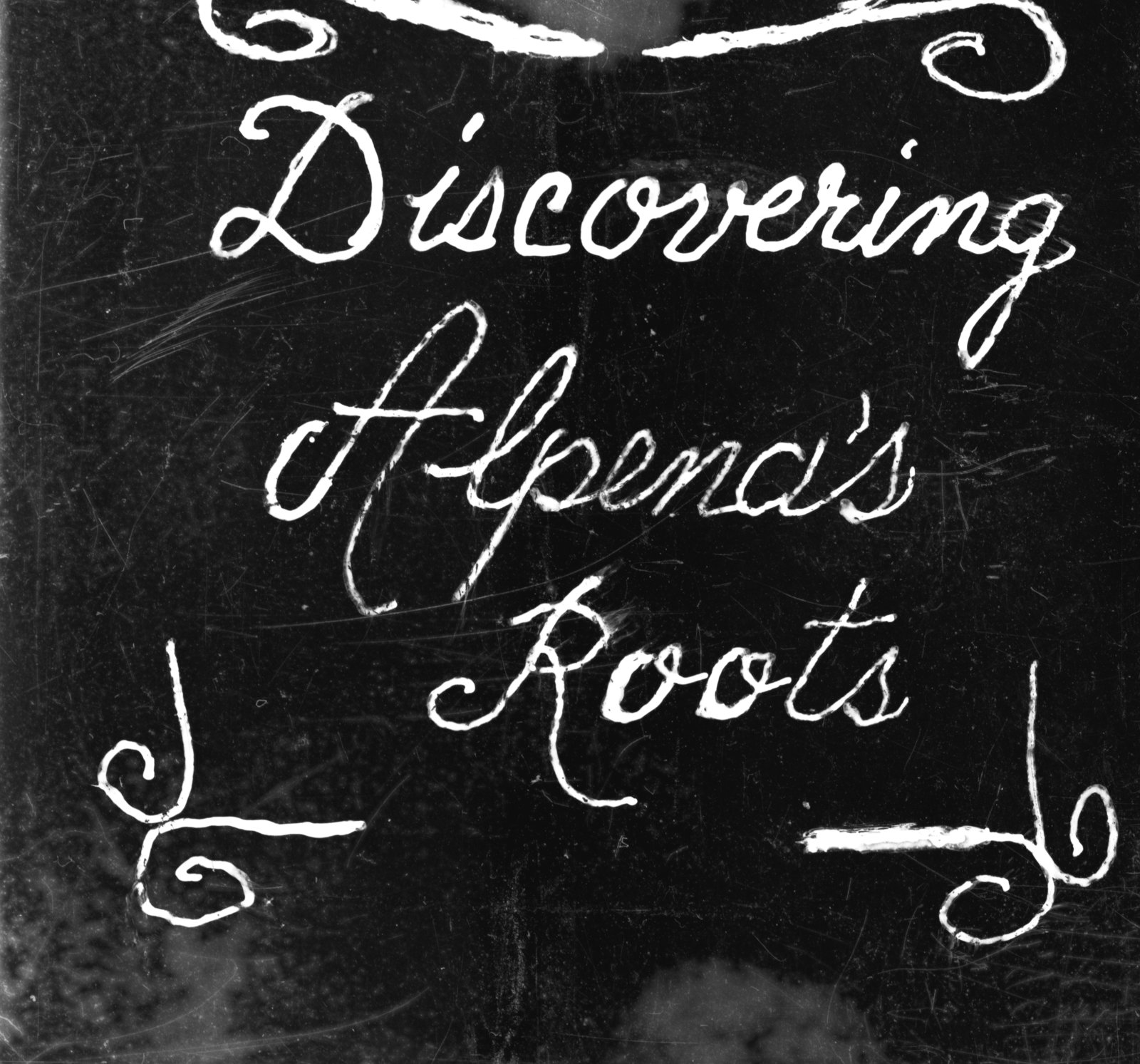 Ann Taber's Finding Alpena's Roots