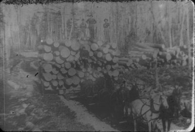 Horse Team Pulling Log Load