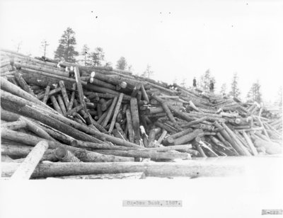 Ox-Bow Log Banks on Thunder Bay River