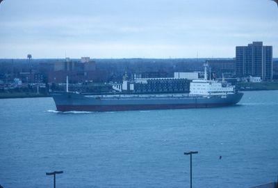 ANTONIO MACEO (1981, Ocean Freighter)