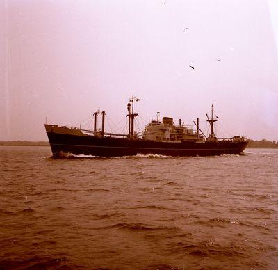 ARALUEN (1958, Ocean Freighter)