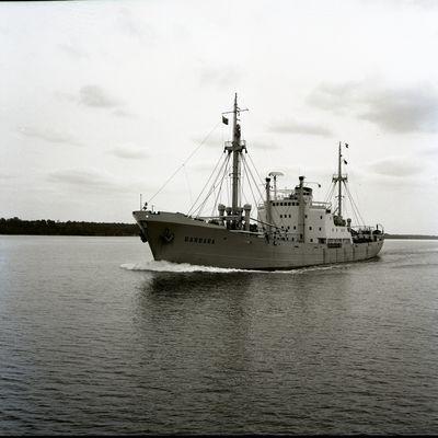 BARBARA (1953, Ocean Freighter)
