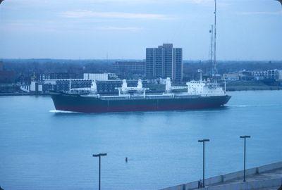 CARRIANNA PRIMROSE (1982, Ocean Freighter)