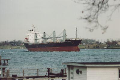CINCHONA (1986, Ocean Freighter)