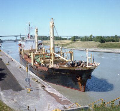 MARITIME HIBISCUS (1975, Ocean Freighter)