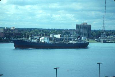 MEANDROS (1963, Ocean Freighter)