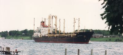 UNTERTURKHEIM (1978, Ocean Freighter)