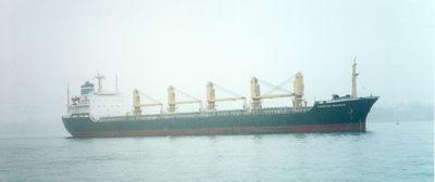 VASILIKI (1981, Ocean Freighter)