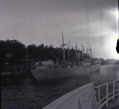 VITO (1937, Ocean Freighter)