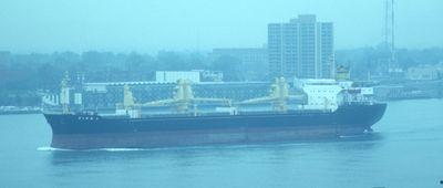 VIVA 1 (1977, Ocean Freighter)
