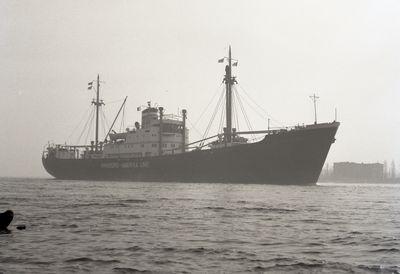 WEISSENBURG (1953, Ocean Freighter)