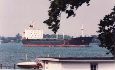 ZIEMIA GNIEZNIENSKA (1985, Ocean Freighter)
