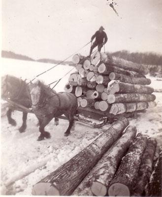 Horse-drawn Logging Sled at Marsden's, circa 1930