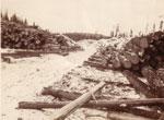 Road Running Through Large Piles of Logs, circa 1930