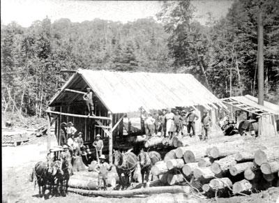 Constructing a Building at the Lumber Camp, circa 1920