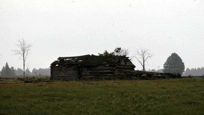 Plate 6, Log cabin, Carden Township