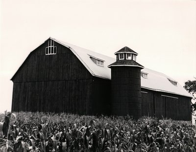 Plate 29, Lip Vault Frame Barn with Wooden Silo, Mariposa Township