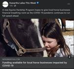 January 19: Funding available for local horse businesses impacted by COVID-19