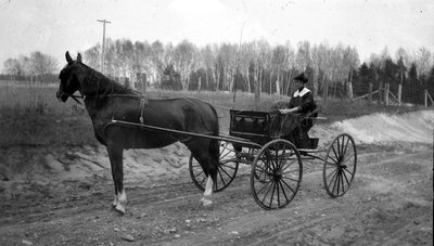 A woman driving her horse and carriage