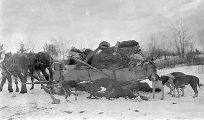A horse drawn sleigh loaded with gear and slain deer