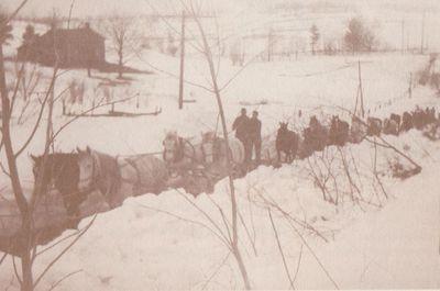 Horse-drawn snow clearing teams, Dundonald, Cramahe Township