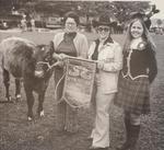 Best Beef Herd Award at Fall Fair 1977