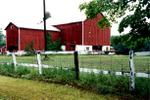11820 10 Sideroad 'Pine Haven Farms' - barn.