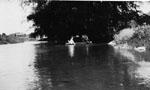 Canoeing on Glen Williams mill pond