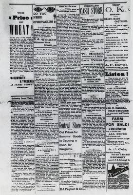Grimsby Independent, 3 Aug 1893