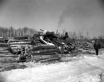 Logging at Peninsula