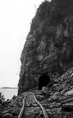 Mink Tunnel