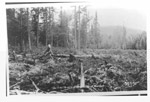 Clearing for Red Rock Town Tosite (1937)
