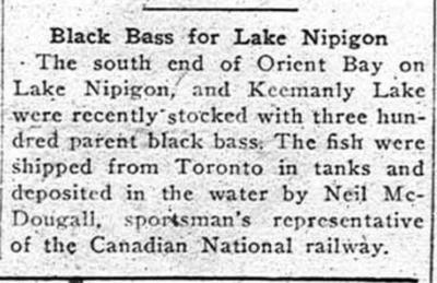 Black Bass for Lake Nipigon