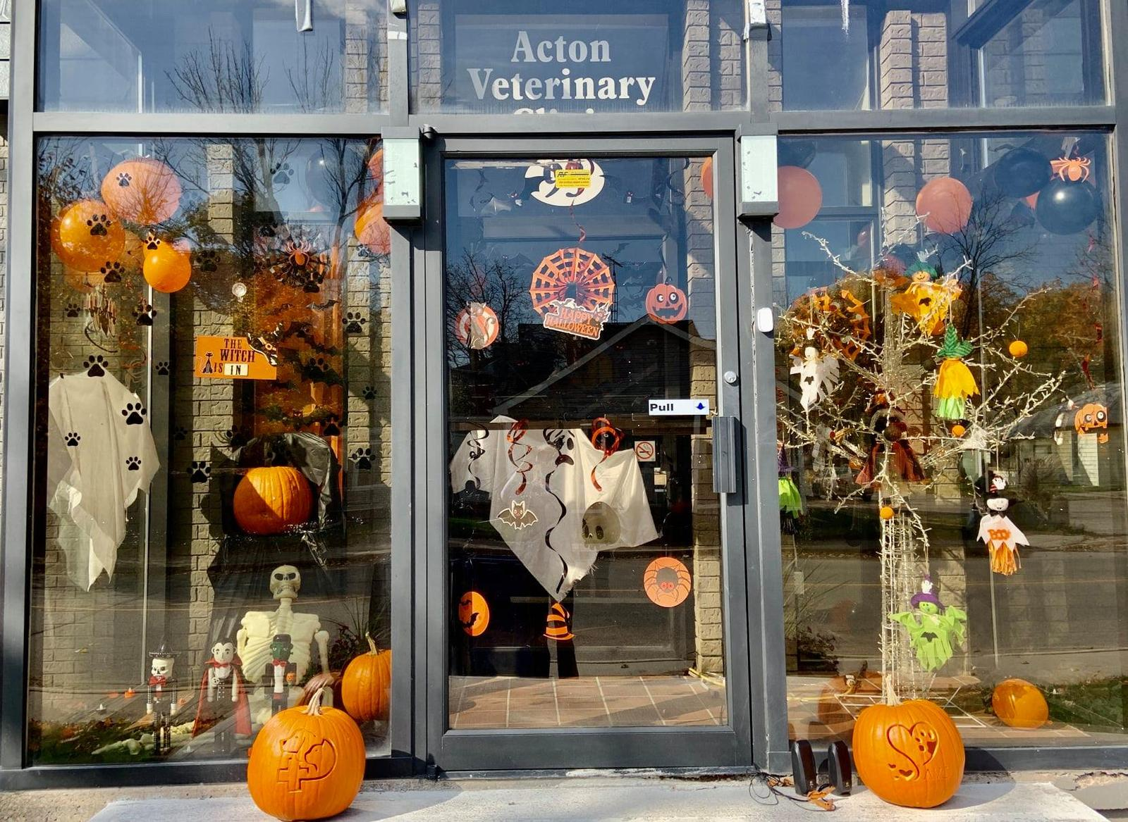 Acton Veterinary Clinic wins Acton BIA Halloween Best Decorated Business