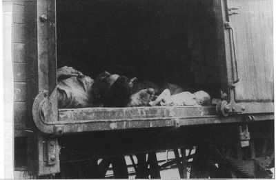Non-Holodomor: Dead passengers, including an infant, lay on the floor of a railroad boxcar in Russia