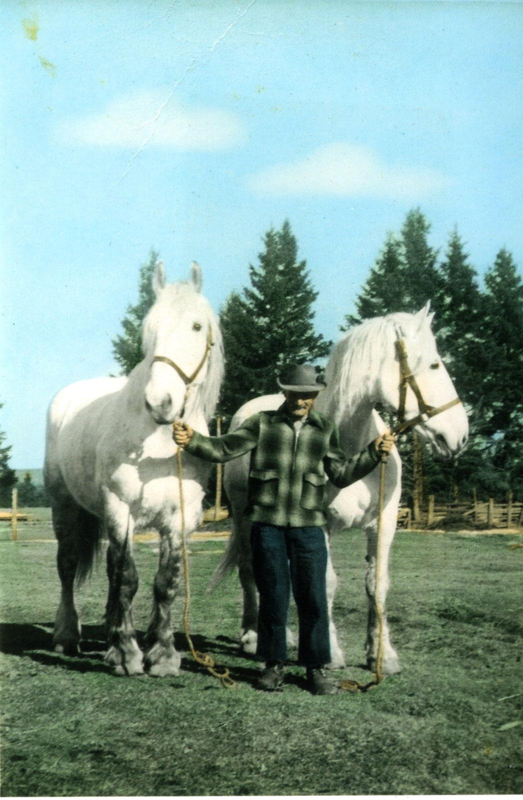 Joe LePage With Logging Horses, 1947